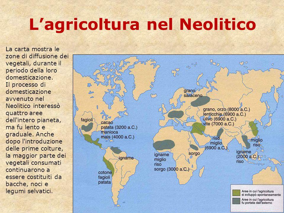 L'agricoltura nel Neolitico