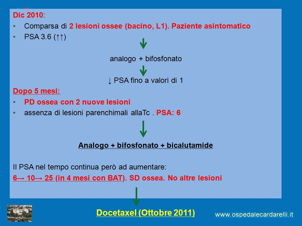 Analogo + bifosfonato + bicalutamide
