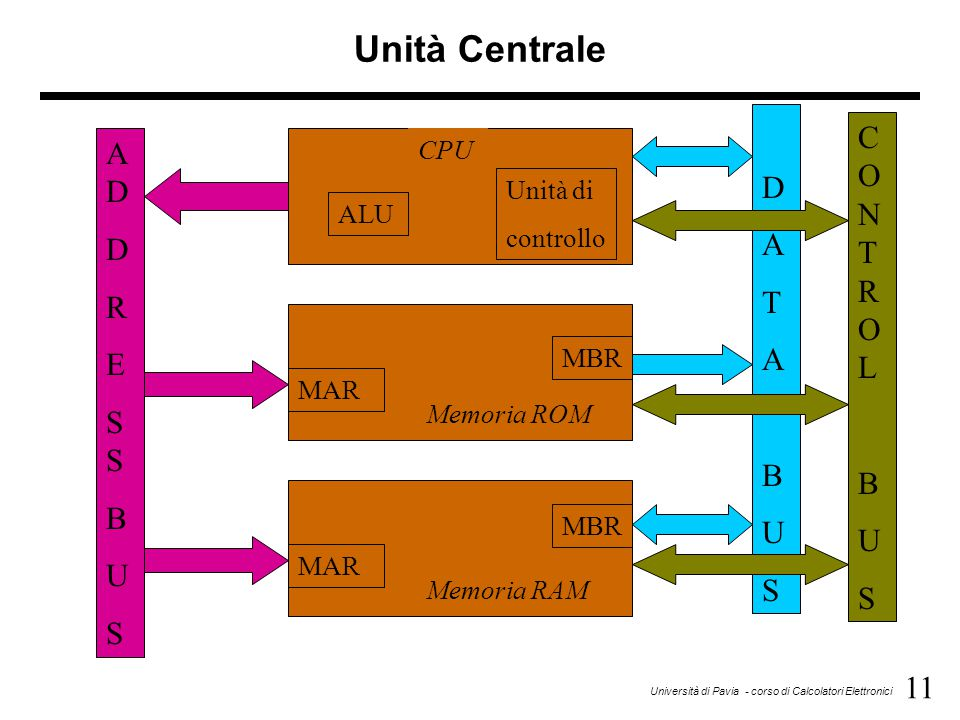 Unità Centrale CO N T R O L D AD A D T R E S S B B U B U S U S S CPU
