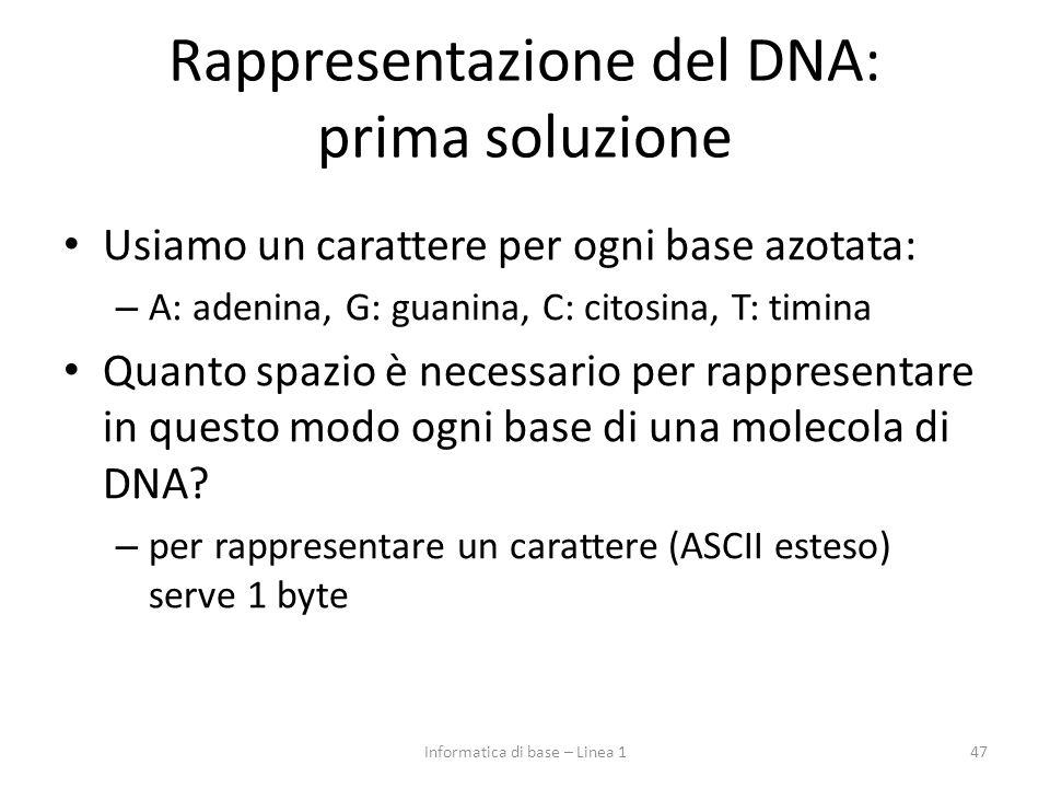 Rappresentazione del DNA: prima soluzione