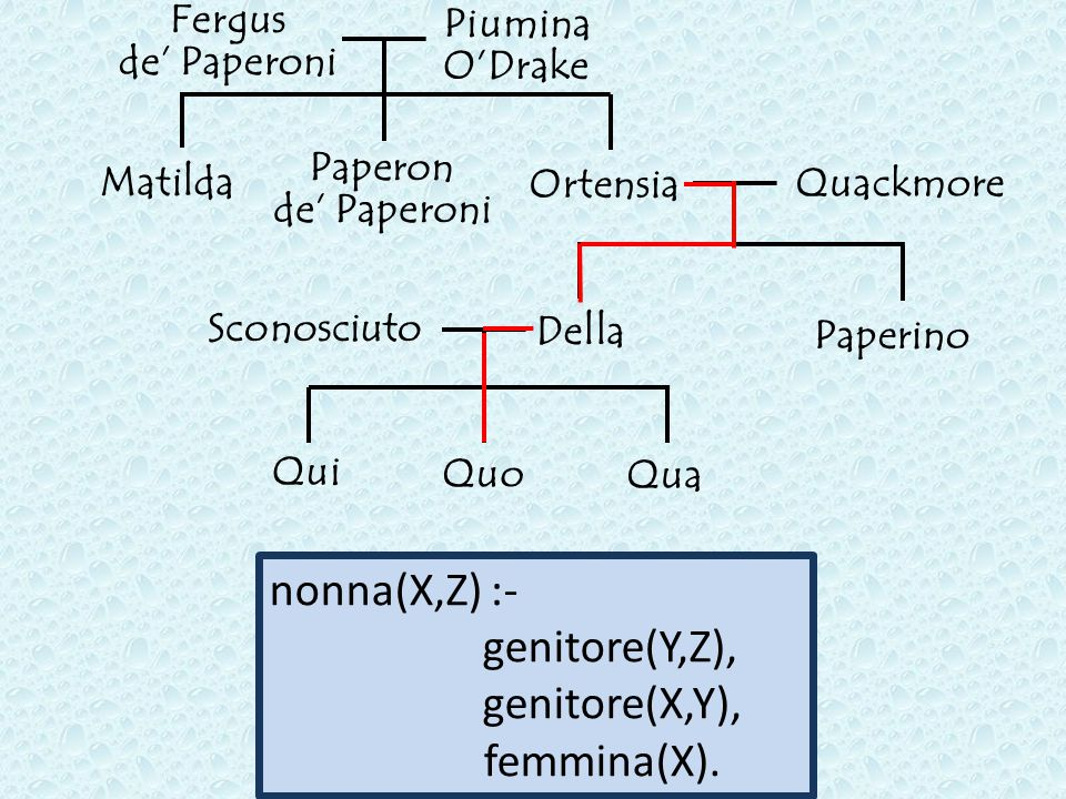 nonna(X,Z) :- genitore(Y,Z), genitore(X,Y), femmina(X). Fergus Piumina