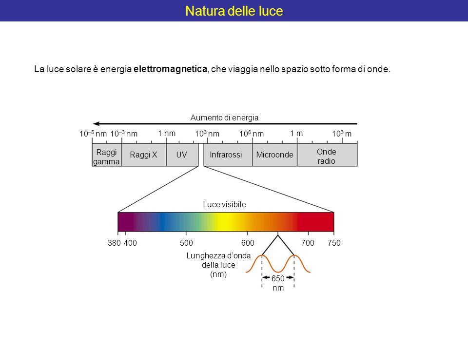 Natura delle luce La luce solare è energia elettromagnetica, che viaggia nello spazio sotto forma di onde.