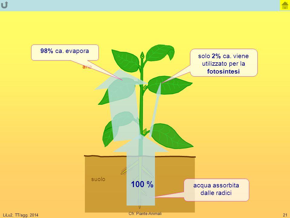 100 % 98% ca. evapora solo 2% ca. viene utilizzato per la fotosintesi