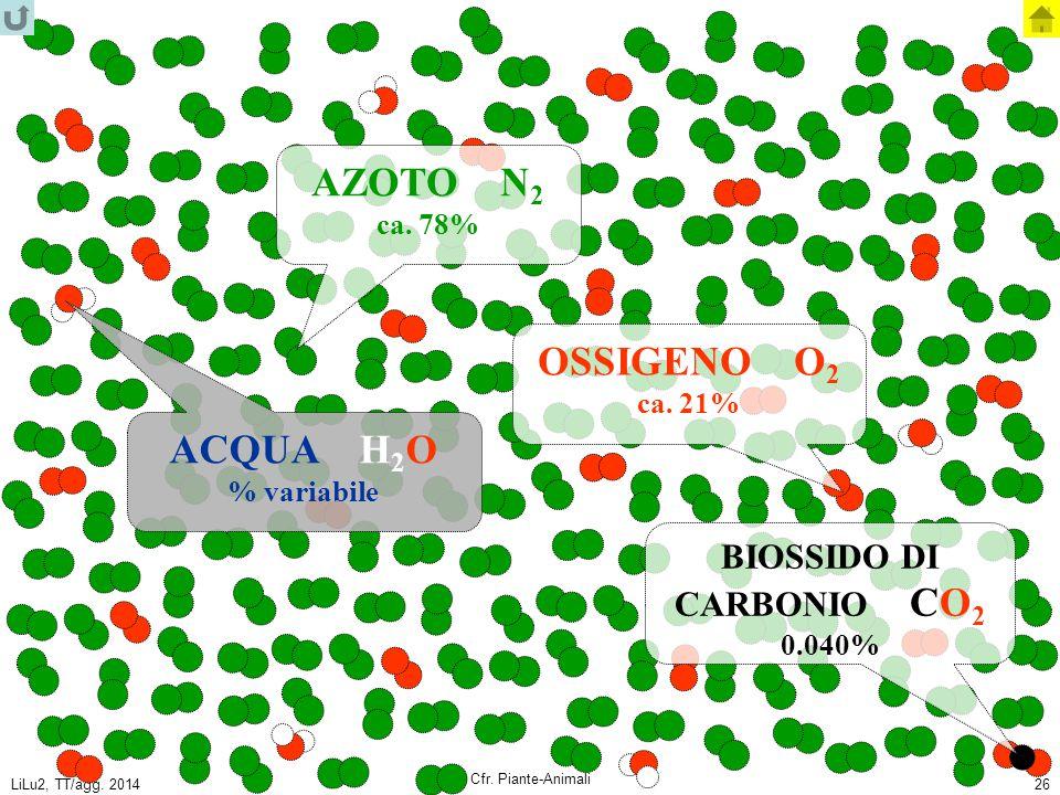 AZOTO N2 OSSIGENO O2 ACQUA H2O