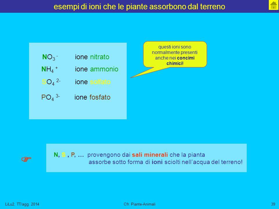 esempi di ioni che le piante assorbono dal terreno
