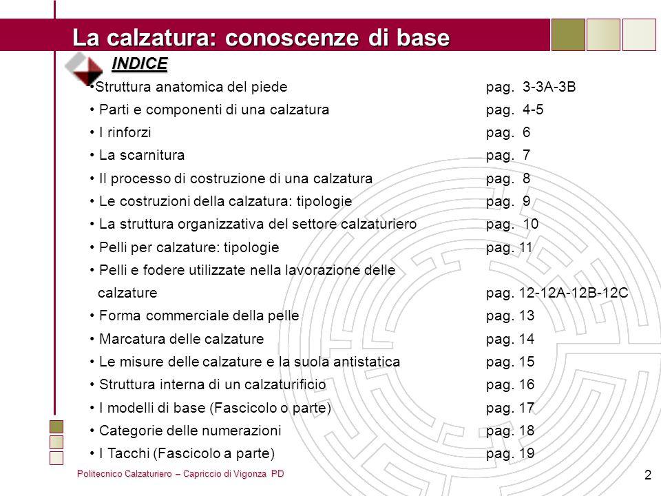 INDICE Struttura anatomica del piede pag. 3-3A-3B