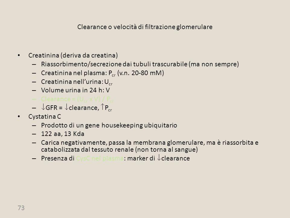 Clearance o velocità di filtrazione glomerulare