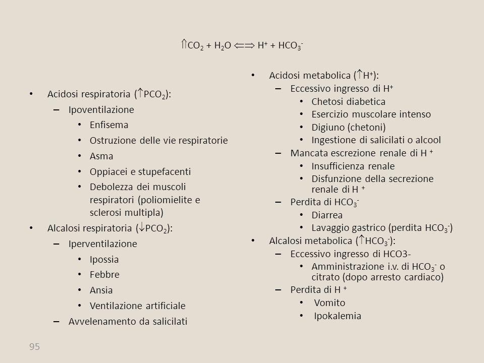 CO2 + H2O  H+ + HCO3- Acidosi metabolica (H+): Eccessivo ingresso di H+ Chetosi diabetica. Esercizio muscolare intenso.