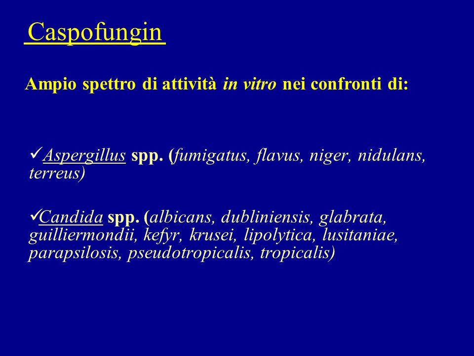 Caspofungin Ampio spettro di attività in vitro nei confronti di: