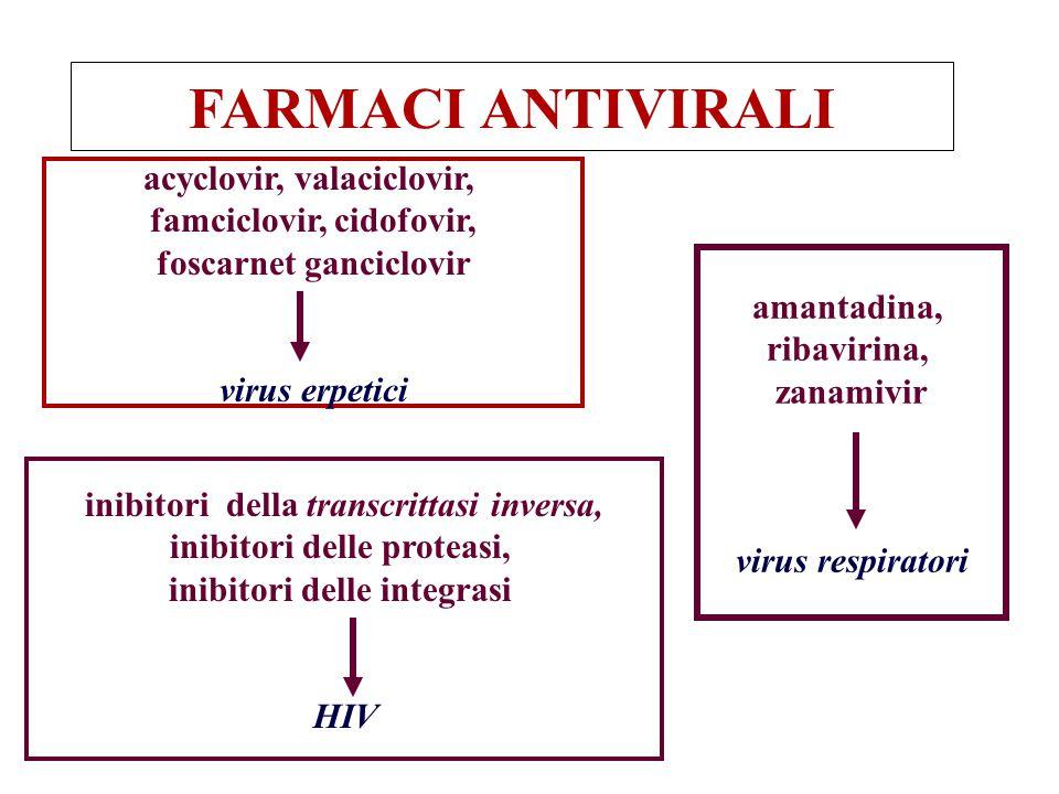 FARMACI ANTIVIRALI acyclovir, valaciclovir, famciclovir, cidofovir,