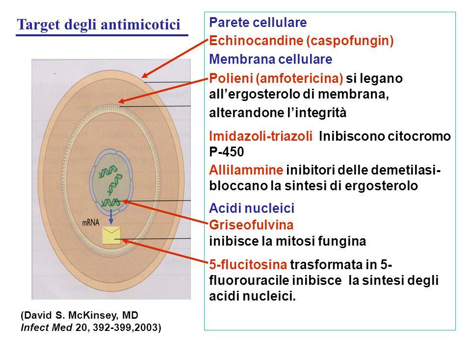 Target degli antimicotici