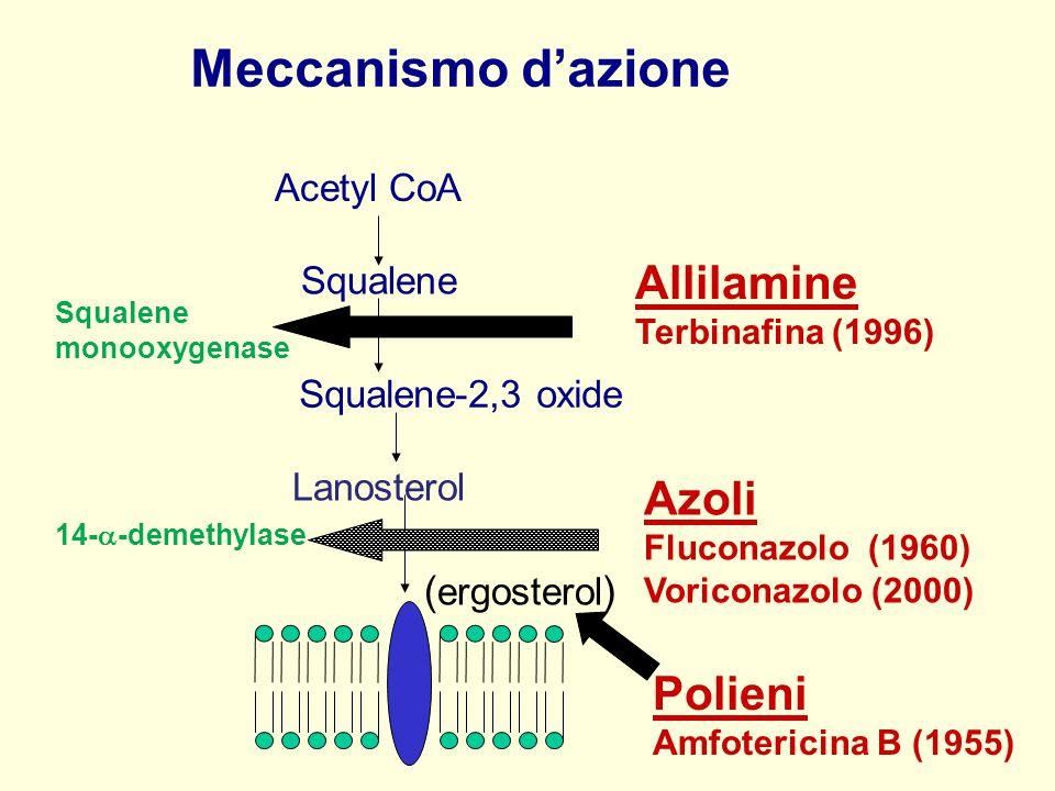 Meccanismo d'azione Allilamine Azoli Fluconazolo (1960) Polieni
