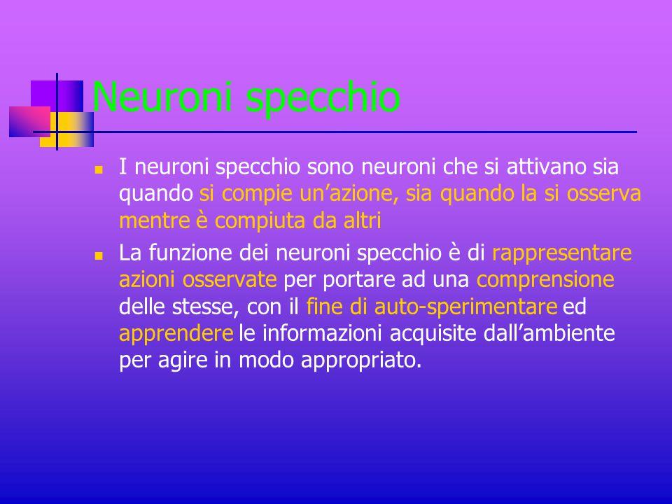 Neuroni specchio I neuroni specchio sono neuroni che si attivano sia quando si compie un'azione, sia quando la si osserva mentre è compiuta da altri.