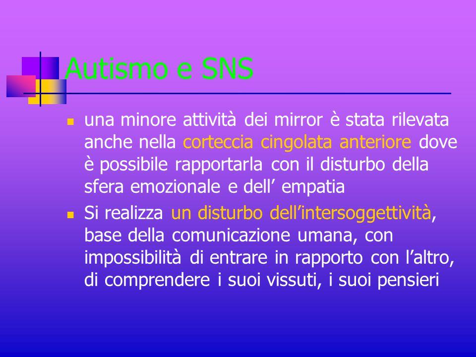 Autismo e SNS