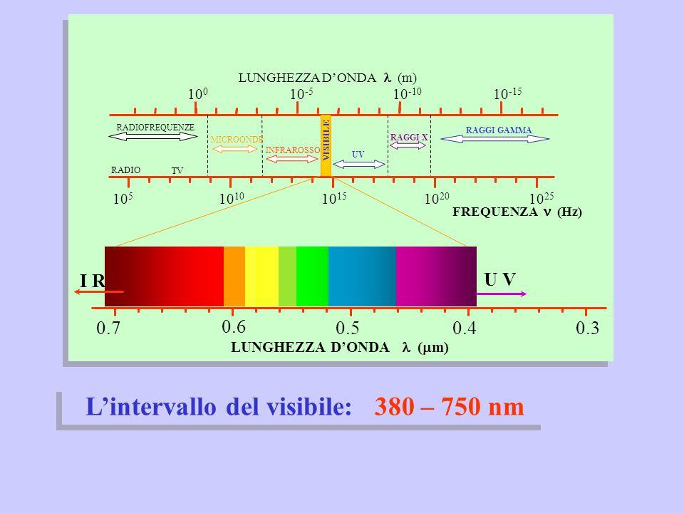 LUNGHEZZA D'ONDA l (mm) L'intervallo del visibile: 380 – 750 nm