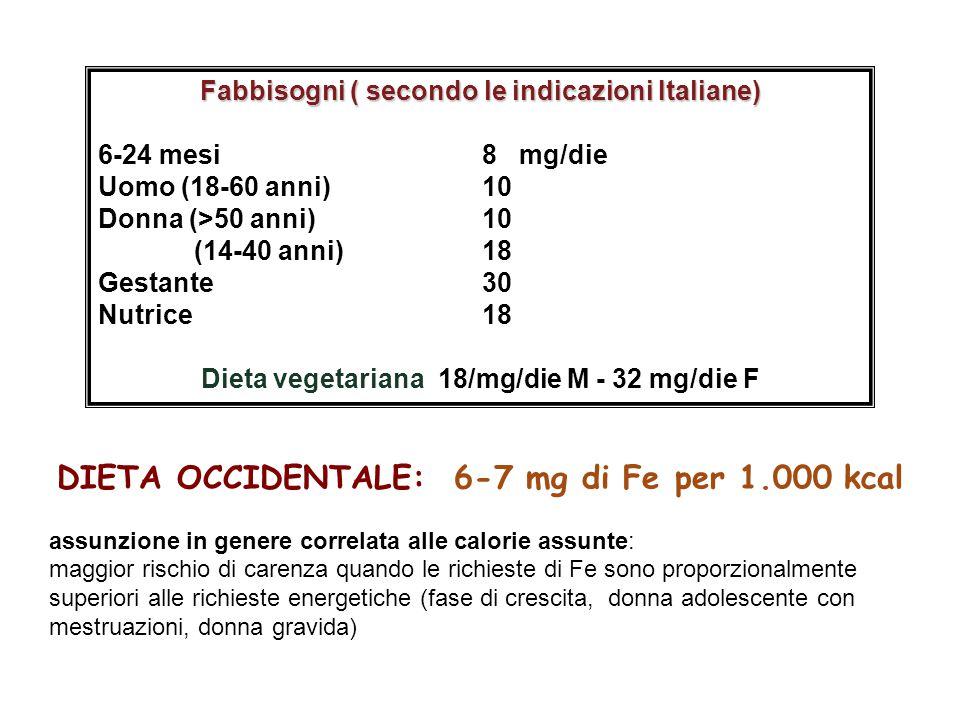 DIETA OCCIDENTALE: 6-7 mg di Fe per 1.000 kcal