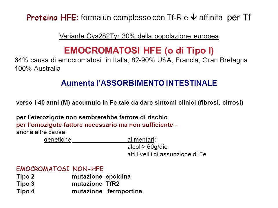 EMOCROMATOSI HFE (o di Tipo I)