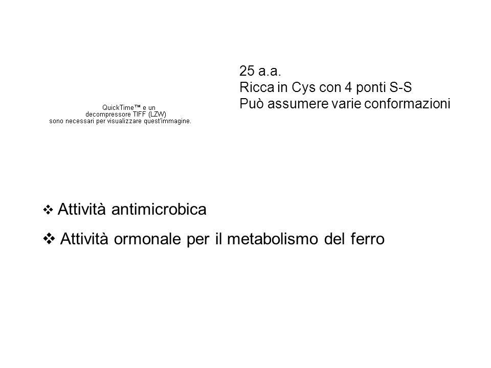 Attività ormonale per il metabolismo del ferro