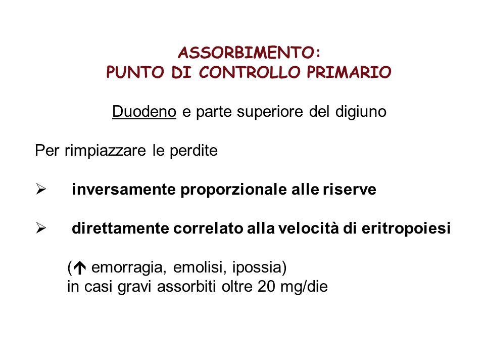PUNTO DI CONTROLLO PRIMARIO