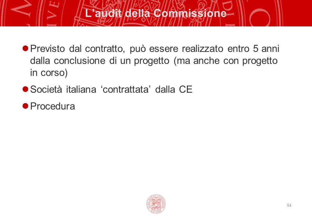 L'audit della Commissione