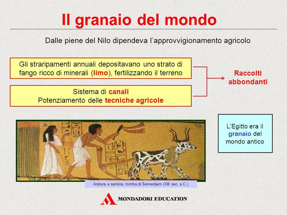 Il granaio del mondo Dalle piene del Nilo dipendeva l'approvvigionamento agricolo.