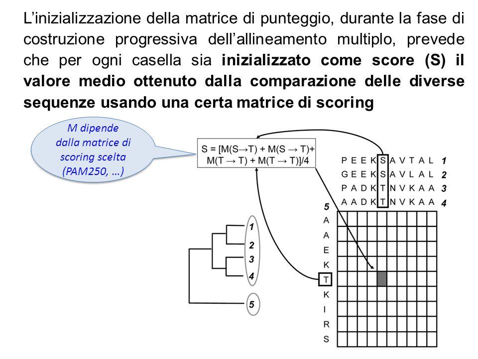M dipende dalla matrice di scoring scelta (PAM250, …)