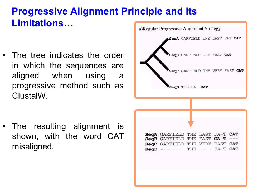 Progressive Alignment Principle and its Limitations…
