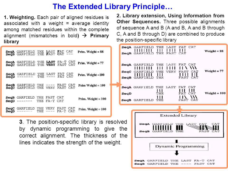 The Extended Library Principle…