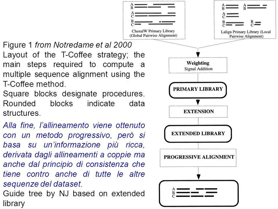 Figure 1 from Notredame et al 2000