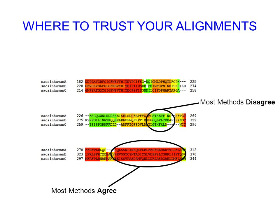WHERE TO TRUST YOUR ALIGNMENTS