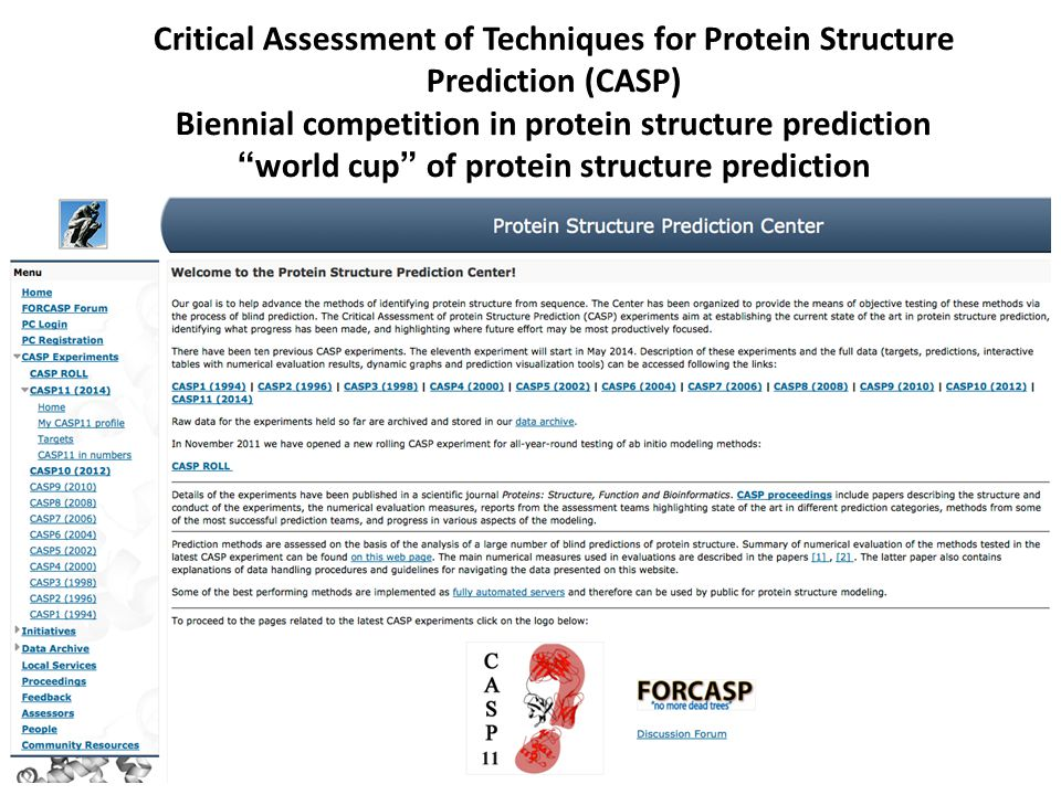 Biennial competition in protein structure prediction
