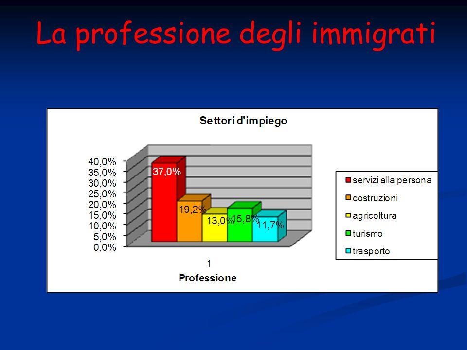 La professione degli immigrati