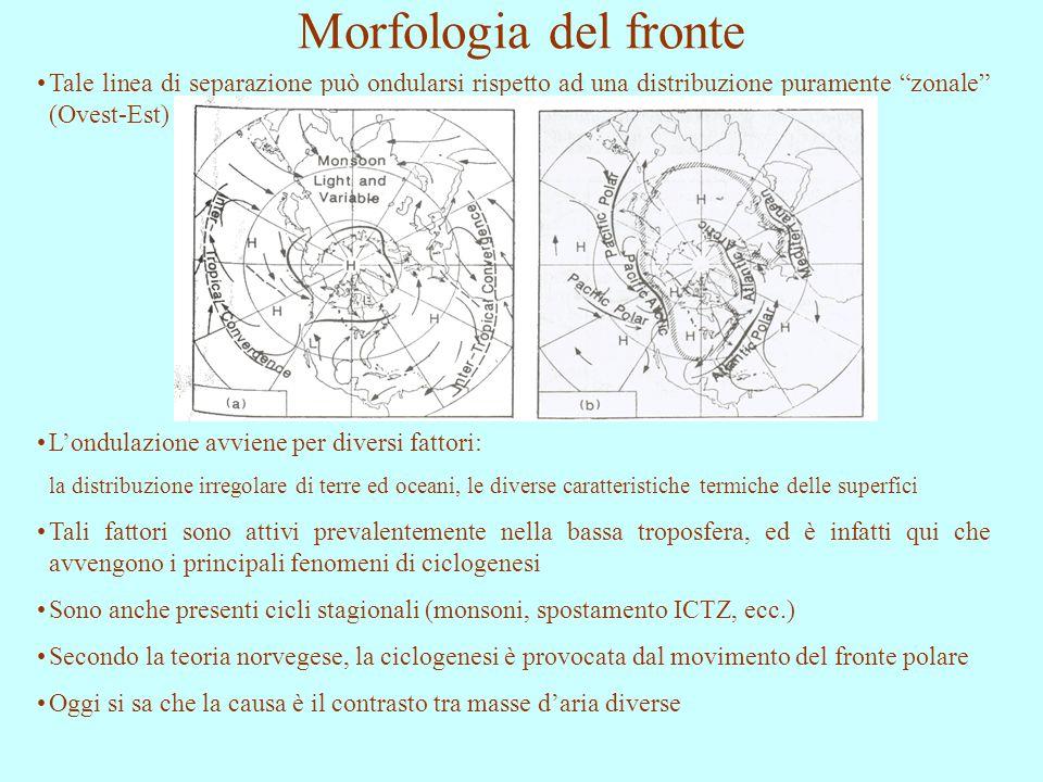 Morfologia del fronte Tale linea di separazione può ondularsi rispetto ad una distribuzione puramente zonale (Ovest-Est)