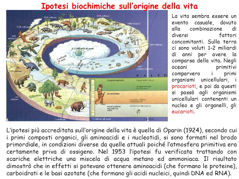Ipotesi biochimiche sull'origine della vita