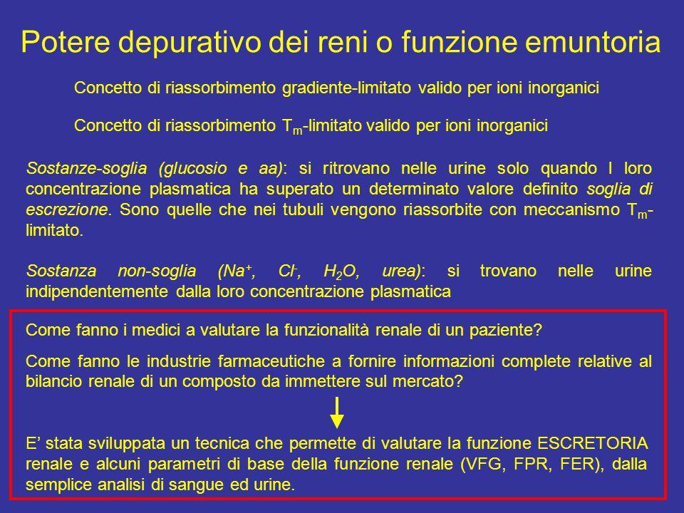 Potere depurativo dei reni o funzione emuntoria