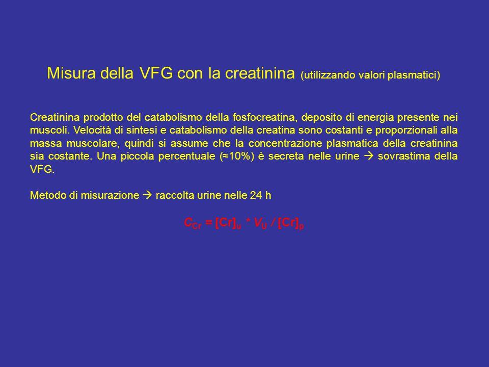 Misura della VFG con la creatinina (utilizzando valori plasmatici)