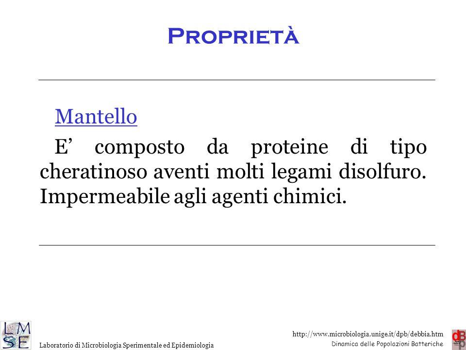 Proprietà Mantello. E' composto da proteine di tipo cheratinoso aventi molti legami disolfuro.