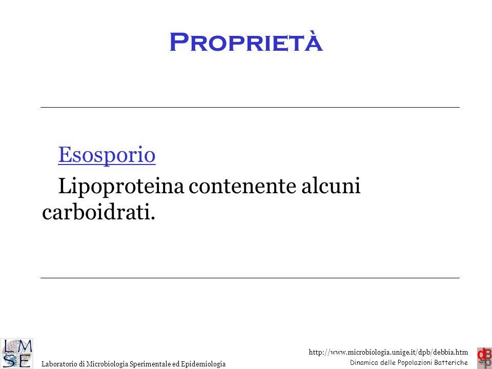 Proprietà Esosporio Lipoproteina contenente alcuni carboidrati.