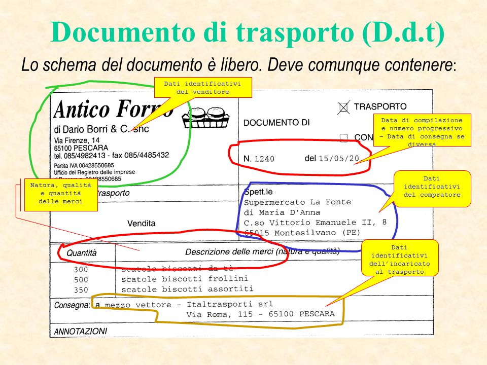 Documento di trasporto (D.d.t)