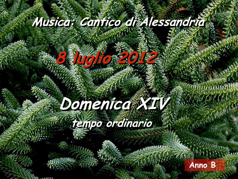 8 luglio 2012 Musica: Cantico di Alessandria Domenica XIV