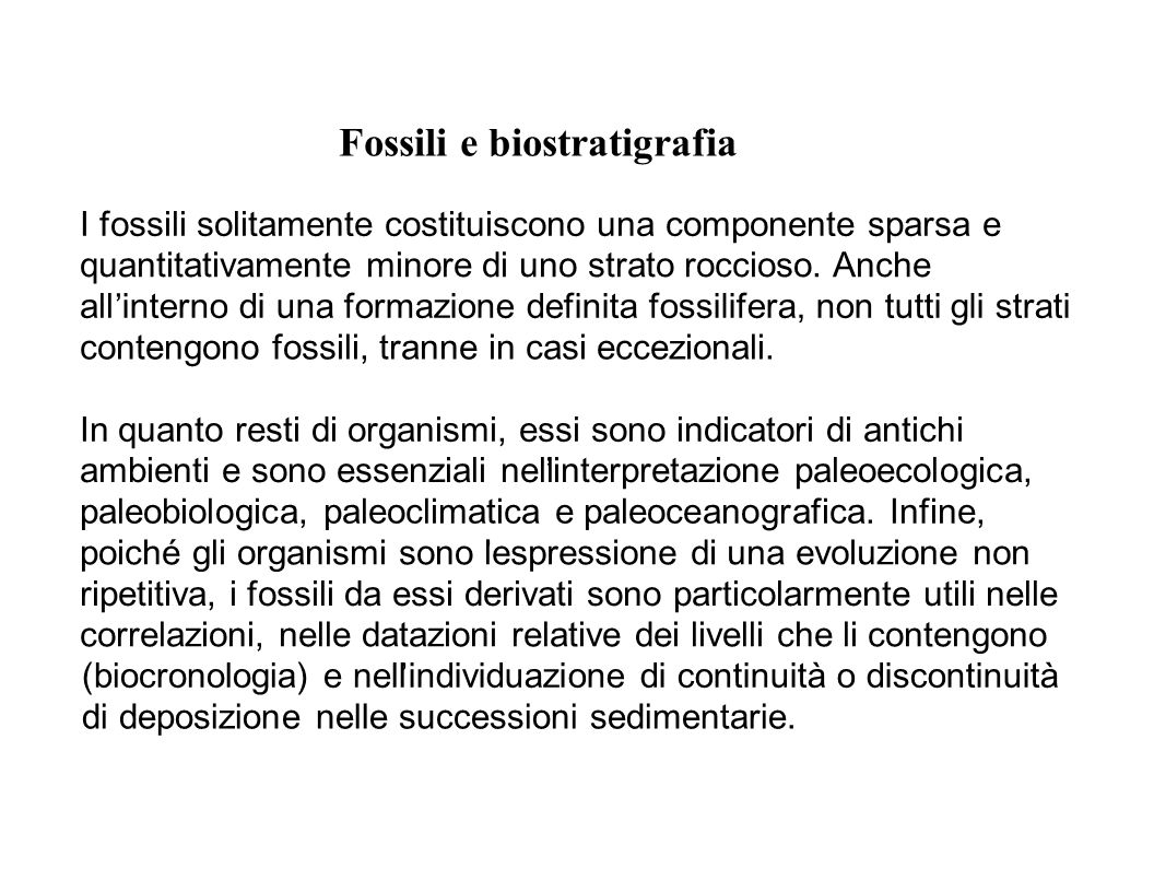 Fossili e biostratigrafia