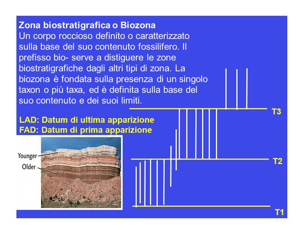 Zona biostratigrafica o Biozona