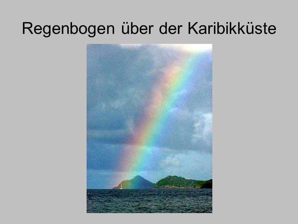 Regenbogen über der Karibikküste
