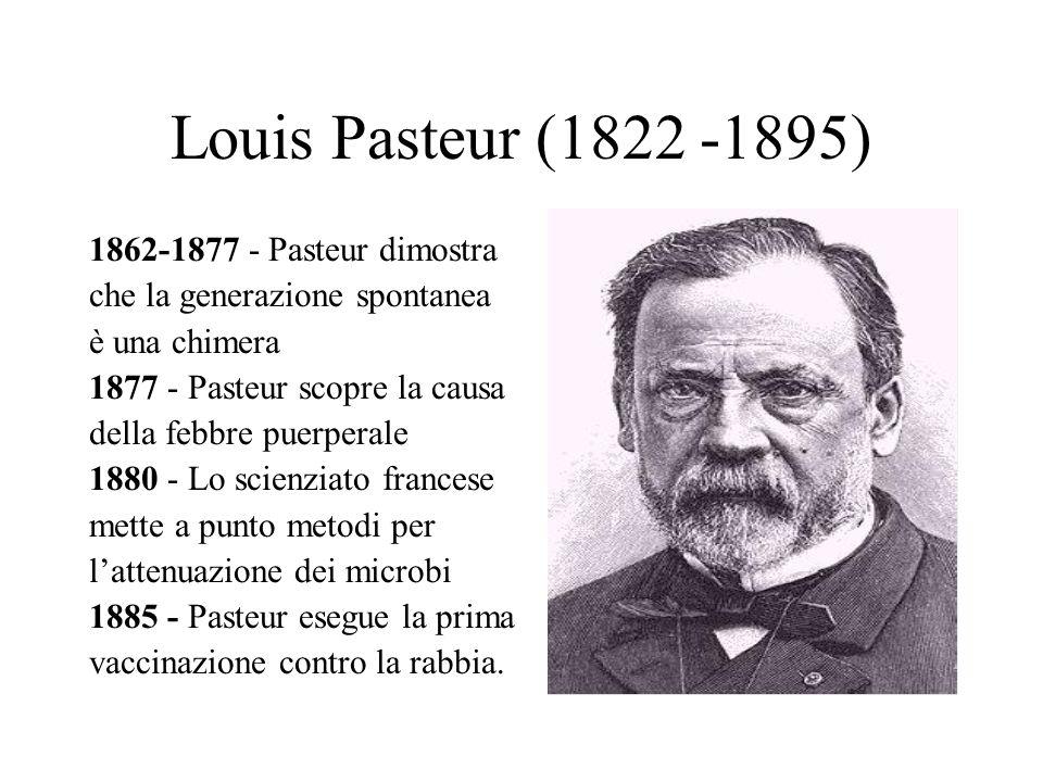 Louis Pasteur (1822 -1895) 1862-1877 - Pasteur dimostra