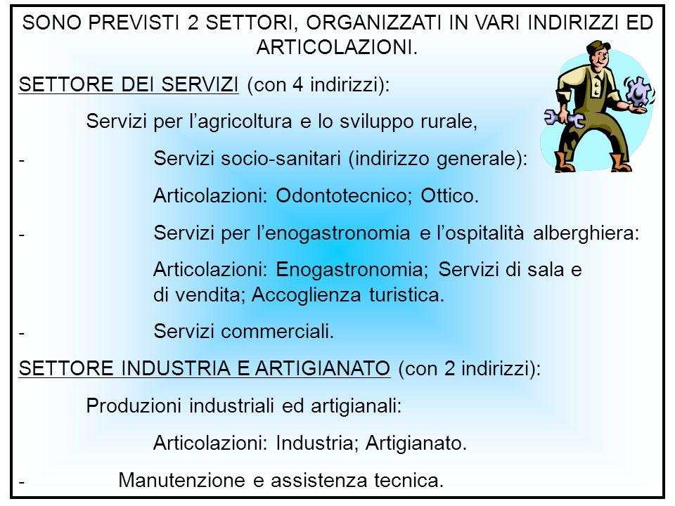 SONO PREVISTI 2 SETTORI, ORGANIZZATI IN VARI INDIRIZZI ED ARTICOLAZIONI.