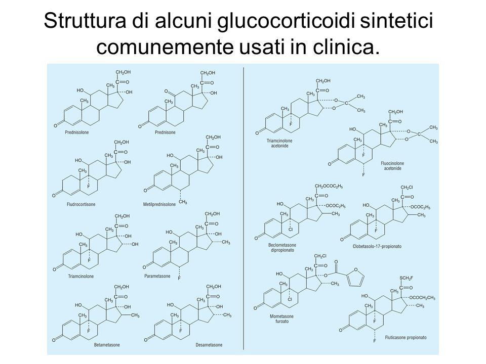 Struttura di alcuni glucocorticoidi sintetici comunemente usati in clinica.