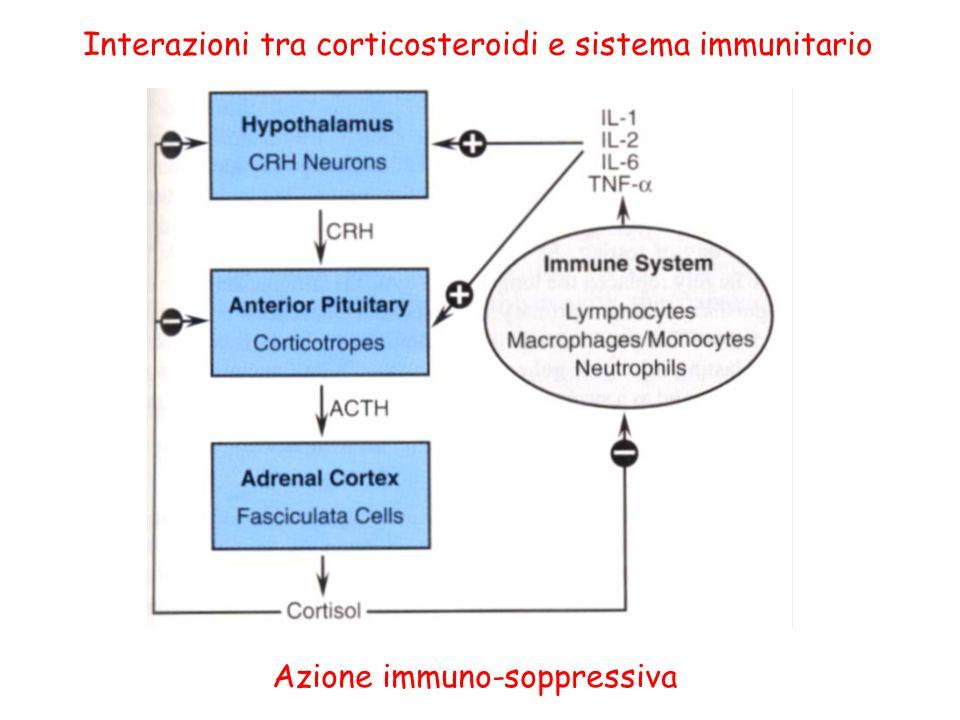Interazioni tra corticosteroidi e sistema immunitario