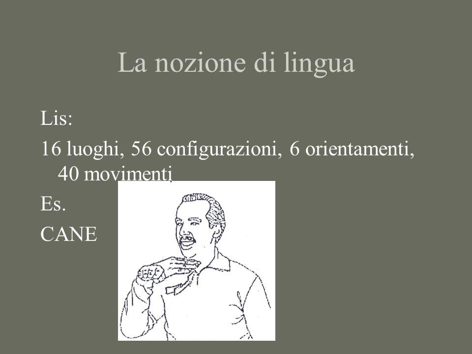 La nozione di lingua Lis: