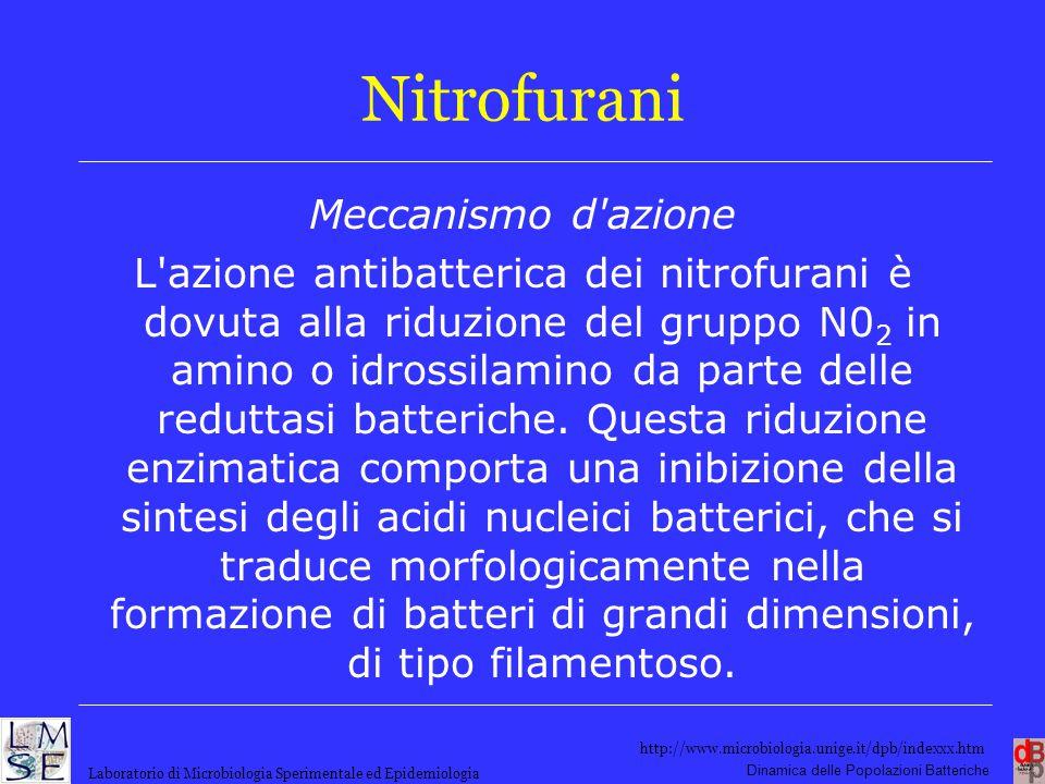 Nitrofurani Meccanismo d azione