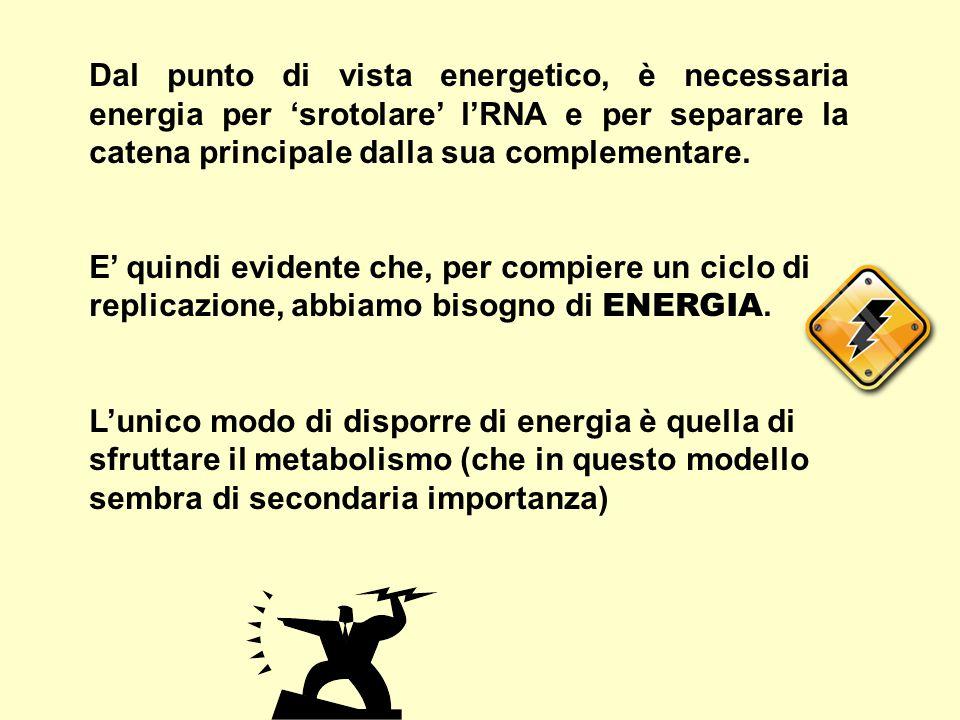 Dal punto di vista energetico, è necessaria energia per 'srotolare' l'RNA e per separare la catena principale dalla sua complementare.